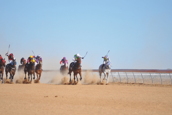 Horses and jockeys coming down the straight at the Birdsville Races